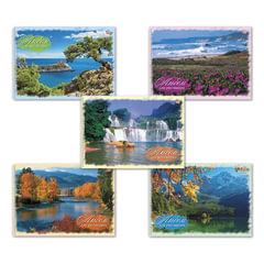 """Альбом для рисования, 40 л., HATBER VK, спираль, обложка мелованный картон, 100 г/м2, """"Природа"""" (5 видов), 40А4Cсп"""