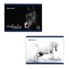 """Альбом для рисования, 40 л., BRAUBERG, обложка мелованный картон, 100 г/м2, """"Благородные кони"""", 2 вида"""