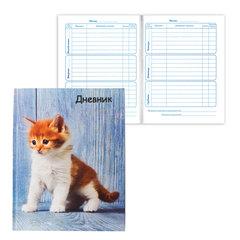 """Дневник для 1-4 классов, твердый, BRAUBERG (БРАУБЕРГ), блестки, """"Милый котенок"""""""