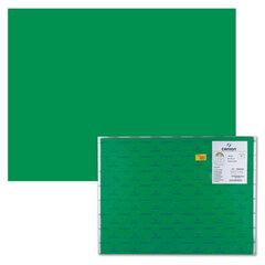 """Бумага (картон) CANSON """"Iris Vivaldi"""", А2+, 500х650 мм, 240 г/м2, 2-сторонняя, """"зеленый мох"""""""