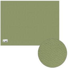 "Бумага для пастели CANSON ""Mi-Teintes"" (""Митант""), А2+, 500х650 мм, 160 г/м, 2-стор., светло-зеленая"