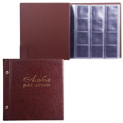 """Альбом для монет и купюр на винтах универсальный, 224х224 мм, на 216 монет до D - 45 мм, выдвижные карманы, коричневый, """"ДПС"""""""