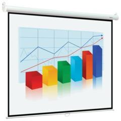 Экран проекционный DIGIS OPTIMAL-B, матовый, настенный, 180х240 см, 4:3
