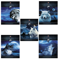 """Тетрадь 48 л., HATBER VK, клетка, обложка мелованный картон, """"Душа волка"""""""