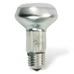 """Лампа накаливания OSRAM Concentra Spot R63 E27, 60 Вт, """"зеркальная"""", колба d=63 мм, цоколь d=27 мм"""
