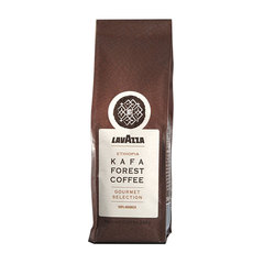 "Кофе в зернах LAVAZZA (Лавацца) ""Kafa Forest Coffee"", натуральный, 500 г, вакуумная упаковка"