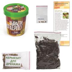 """Набор для выращивания растений ВЫРАСТИ ДЕРЕВО! """"Кофе арабский карликовый"""" (банка, грунт, семена)"""