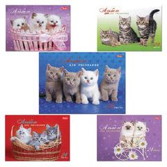"""Альбом для рисования, А4, 24 листа, спираль, обложка картон, HATBER, 205х300 мм, """"Милые котята"""", 24А4Всп"""