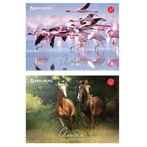 """Альбом для рисования, 32 л., BRAUBERG, обложка мелованный картон, """"Живая природа"""", 2 вида"""