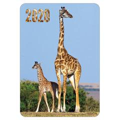 """Календарь карманный 2020 г, 7х10 см, ламинированный, """"Животные"""", HATBER, 326510"""