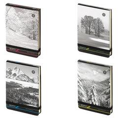 """Бизнес-Блокнот А6 100л., твердая обложка картонная, открытие вверх, Bruno Visconti, """"Природа"""""""