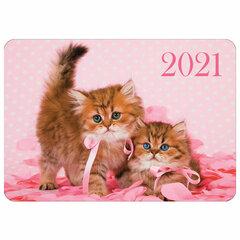 """Календарь карманный, 2021 год, 70х100 мм, """"Котята"""", HATBER, Кк767551"""