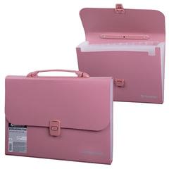 Портфель пластиковый BRAUBERG, А4, 327х254х30 мм, стандартная фактура, 13 отделений, пластиковый индекс, розовый