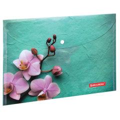 """Папка-конверт с кнопкой BRAUBERG """"Флора"""", А4, 160 мкм, до 100 листов, цветная печать, 228031"""
