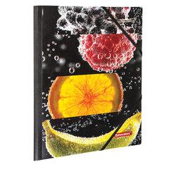 """Папка на резинках BRAUBERG """"FRESH ZONE"""", А4, цветная печать, до 300 листов, 500 мкм, 228036"""