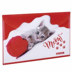 """Папка-конверт с кнопкой BRAUBERG """"FUNNY CAT"""", А4, 160 мкм, цветная печать, 228038"""