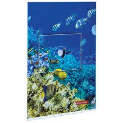 "Папка-уголок BRAUBERG ""SEA WORLD"", А4, 150 мкм, цветная печать, 228042"