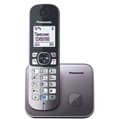 Радиотелефон PANASONIC KX-TG6811RUM, память 50 номеров, АОН, повтор, спикерфон, полифония, 10-100 м, серый