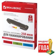 Пленки-заготовки для ламинирования А4, КОМПЛЕКТ 100 шт., 250 мкм, BRAUBERG, 530897