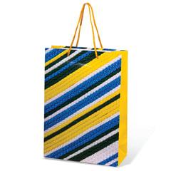 Пакет подарочный ламинированный, 22х31х9 см, геометрия, ассорти